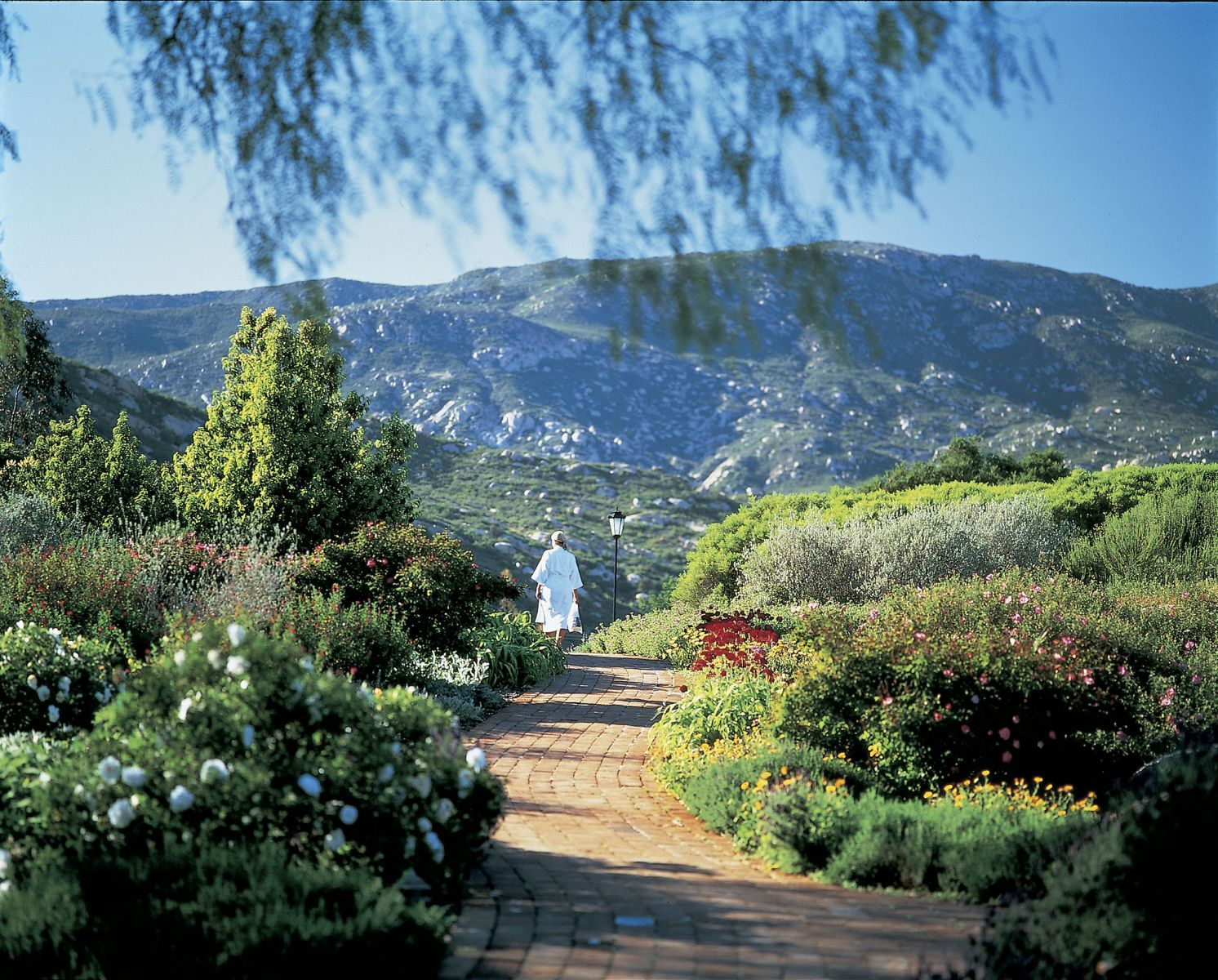 The Grounds at Rancho La Puerta
