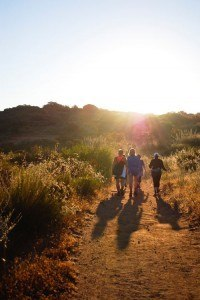 Hiking weight loss