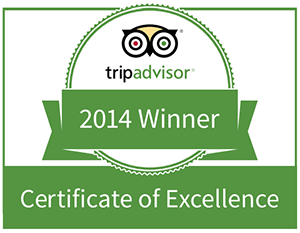 Trip Advisor Service Award