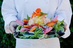 Mountain Trek Salad