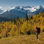 fall-monica-meadows-hike