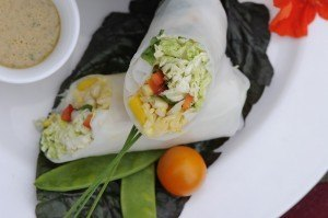 Food-Fresh-Salad-Rolls-with-Almond‐Lime-dressing2.jpg