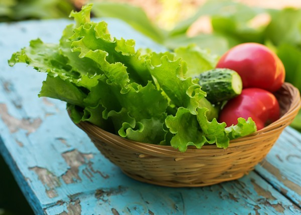 fresh lettuce cucumber and tomato in a basket