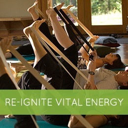 Re-ignite Vital Energy