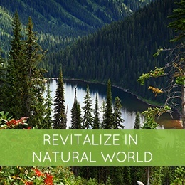 Revitalize In Natural World