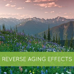 Reverse Aging Effects