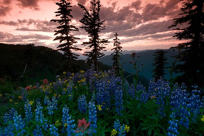 Stunning-sunsets