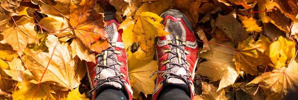 Trail runners on a colorful autumn leafs