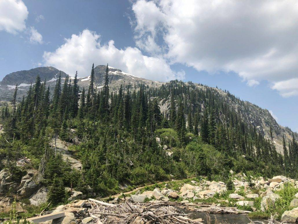 mountain and forest scenery in Kokanee glacier park