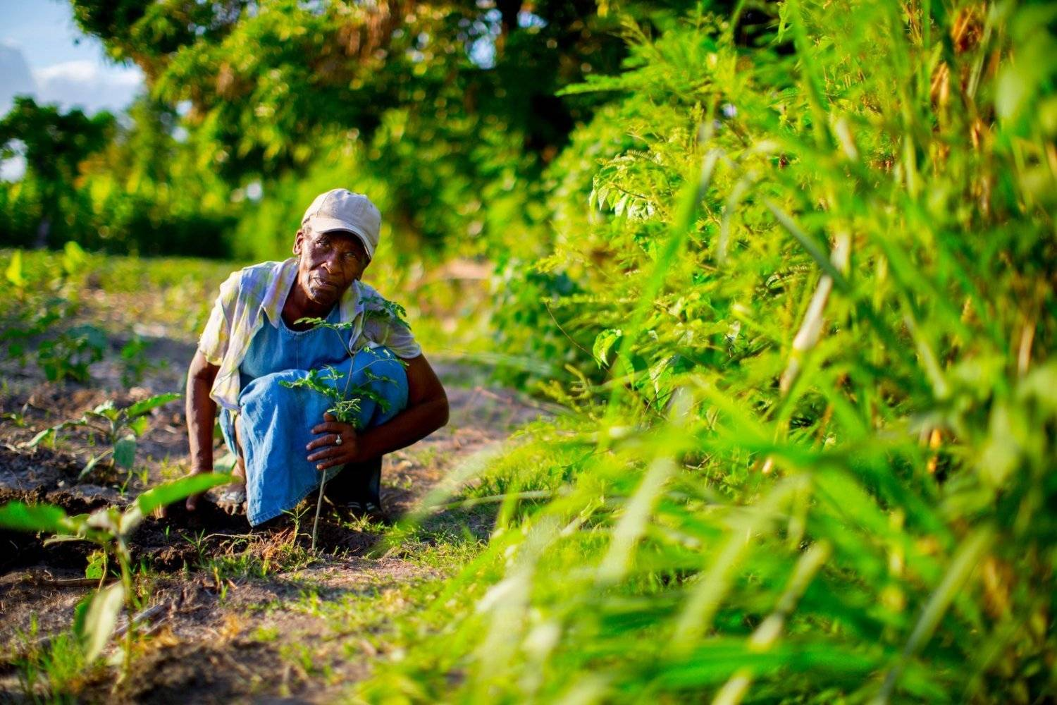 A local man sitting in the dirt with a new tree, donated by Mountain Trek, planted by OneTreePlanted