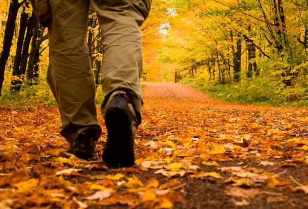 autumn-hiking-health-program